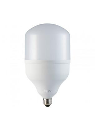 Lâmpada Bulbo Alta Potência 20W 6,5K